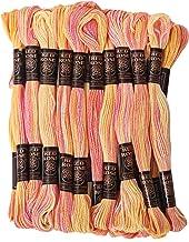 GroupB 25 écheveaux point de croix ancre coton fil à broder fil à broder couture multicolore