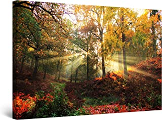 Startonight Cuadro sobre Lienzo Rayos del sol de Otoño, Impresion en Calidad Fotografica Enmarcado y Listo Para Colgar Diseño Moderno Decoración Formato Grande 80 x 120 CM