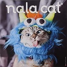 Best tabby cat calendar 2019 Reviews