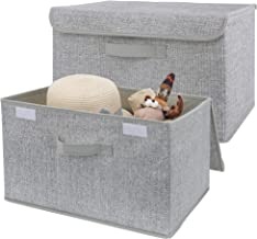 GRANNY SAYS Storage Bins with Lids, Clothing Storage Containers with Handles, Gray Storage Bins for Closet, 2-Pack