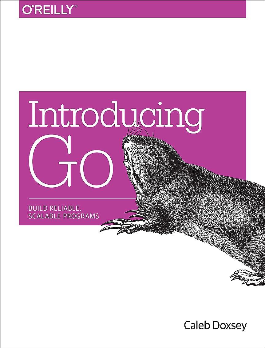 表現施設汗Introducing Go: Build Reliable, Scalable Programs (English Edition)