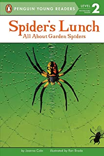 Spider's Lunch: All About Garden Spiders