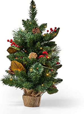 Christopher Knight Home 313536 Christmas Decoration, Green