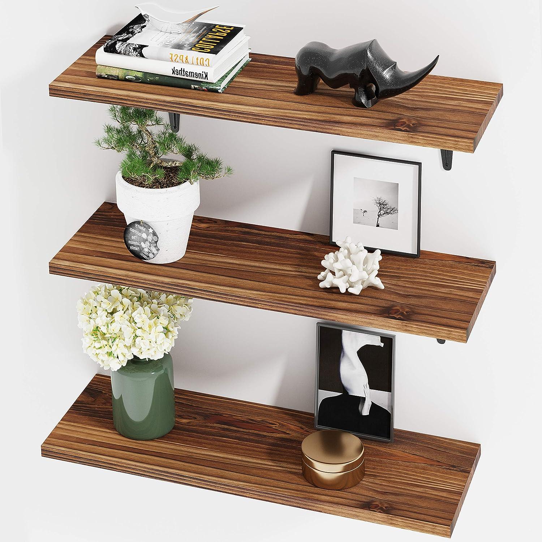 BAMEOS Floating Shelves Rustic 5 ☆ very popular Regular discount Wood Storage Wall