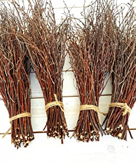 Sponsored Ad - 200 pcs. 100% Natural Birch Twigs for centerpieces, for Crafts, Set of 4 Bundles. Birch Branches for vase D...