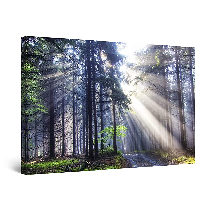 STARTONIGHT Canvas Wall Art - Light in The Forest Nature, Framed Wall Decor 24