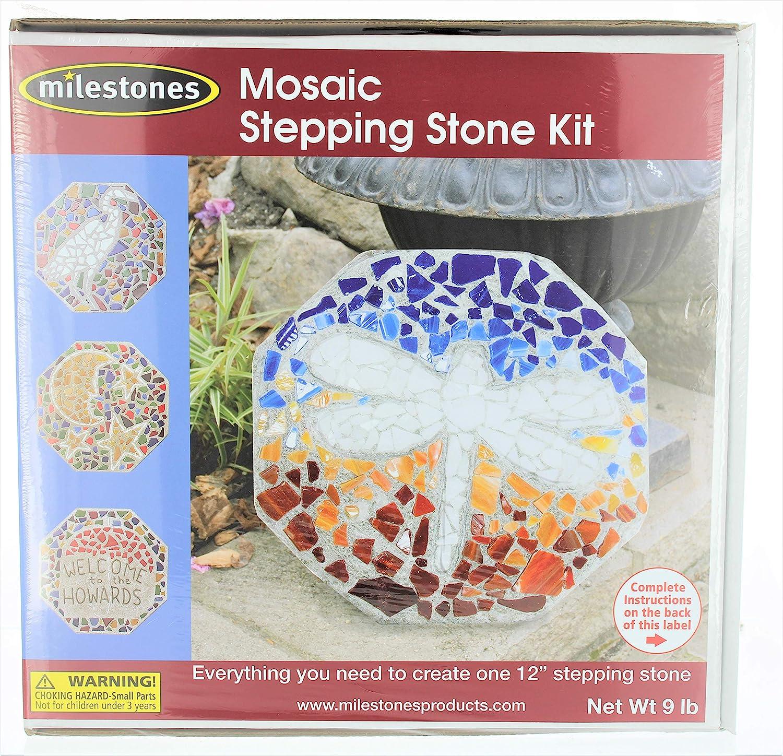 Milestones Mosaic Stepping Stone Kit, Makes a 20 Inch Stone