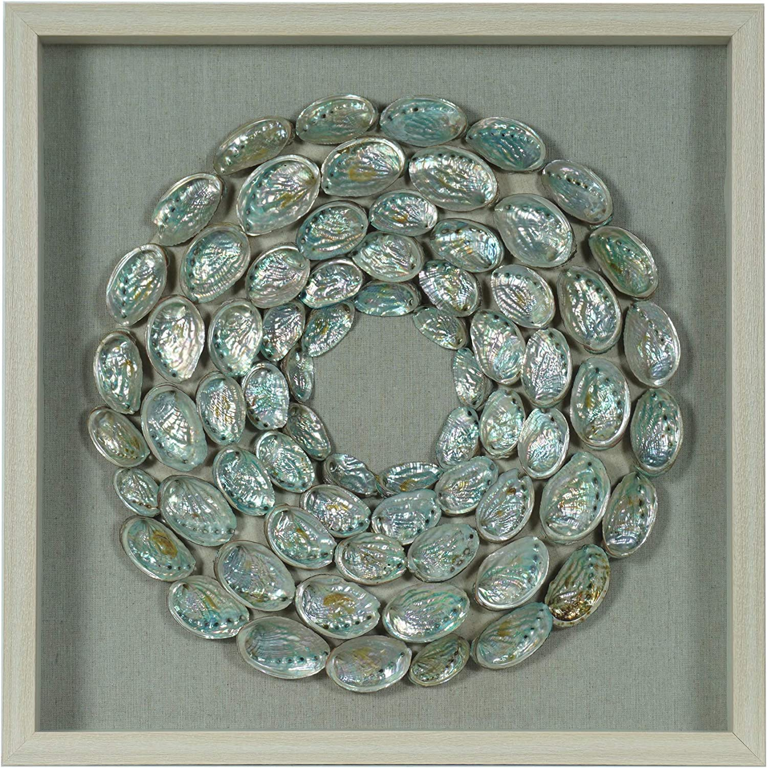 Abalone free Shell Rings Shadow Décor Surprise price Wall Box