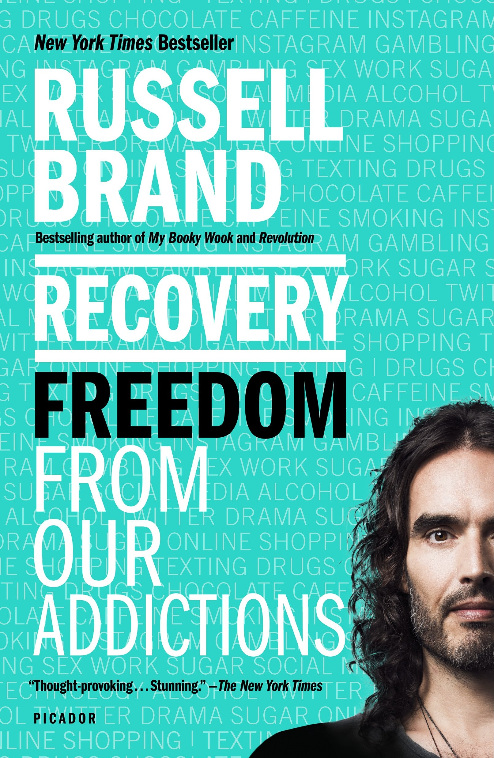 Download Recovery: Freedom From Our Addictions 