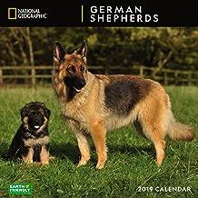 National Geographic German Shepherds 2019 Wall Calendar