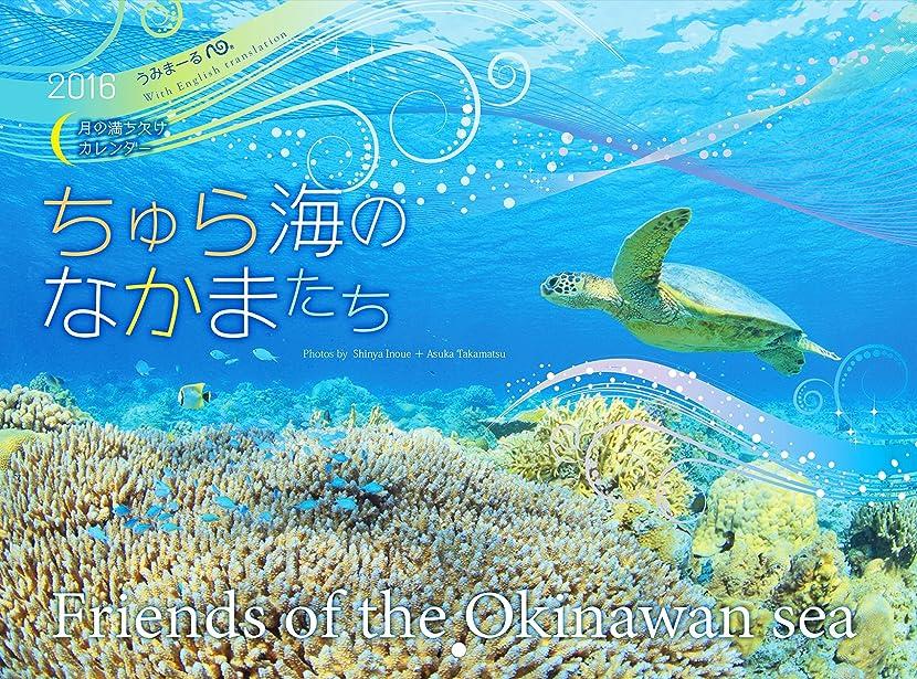 郵便局レトルトプライバシー2016うみまーる中判ムーンカレンダー `ちゅら海のなかまたち?Friends of the Okinawan sea' (月の満ち欠け)