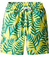 Oscar de la Renta Childrenswear - Palm Leaves Classic Swim Shorts (Toddler/Little Kids/Big Kids)