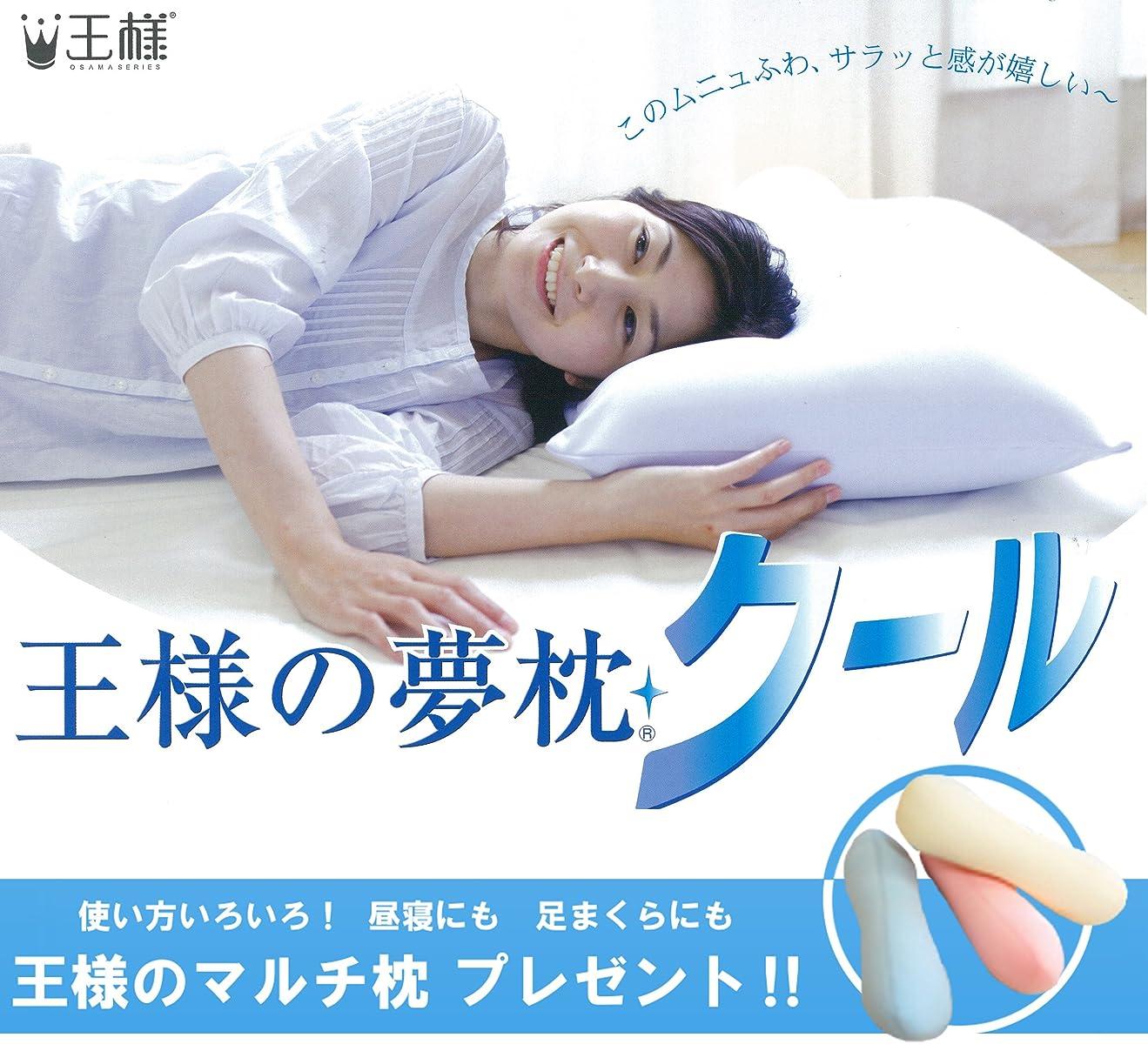 不格好スキムおとなしい王様の夢枕 クール (専用カバー付) W52×D34×H12cm 【王様のマルチ枕をプレゼント】