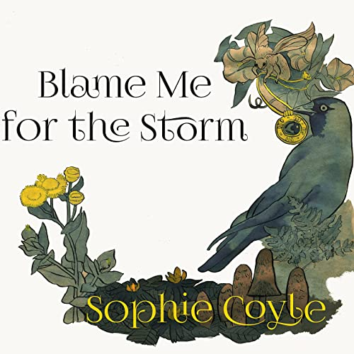 Blame Me for the Storm
