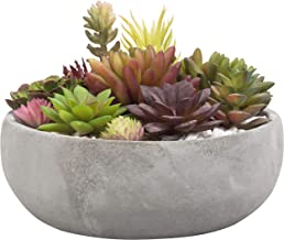large round cement planters