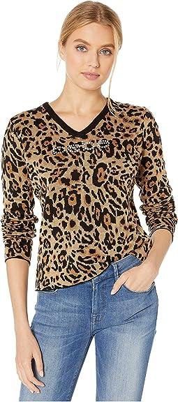 Basic Cheetah