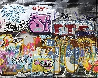ohpopsi Graffiti Wall Mural