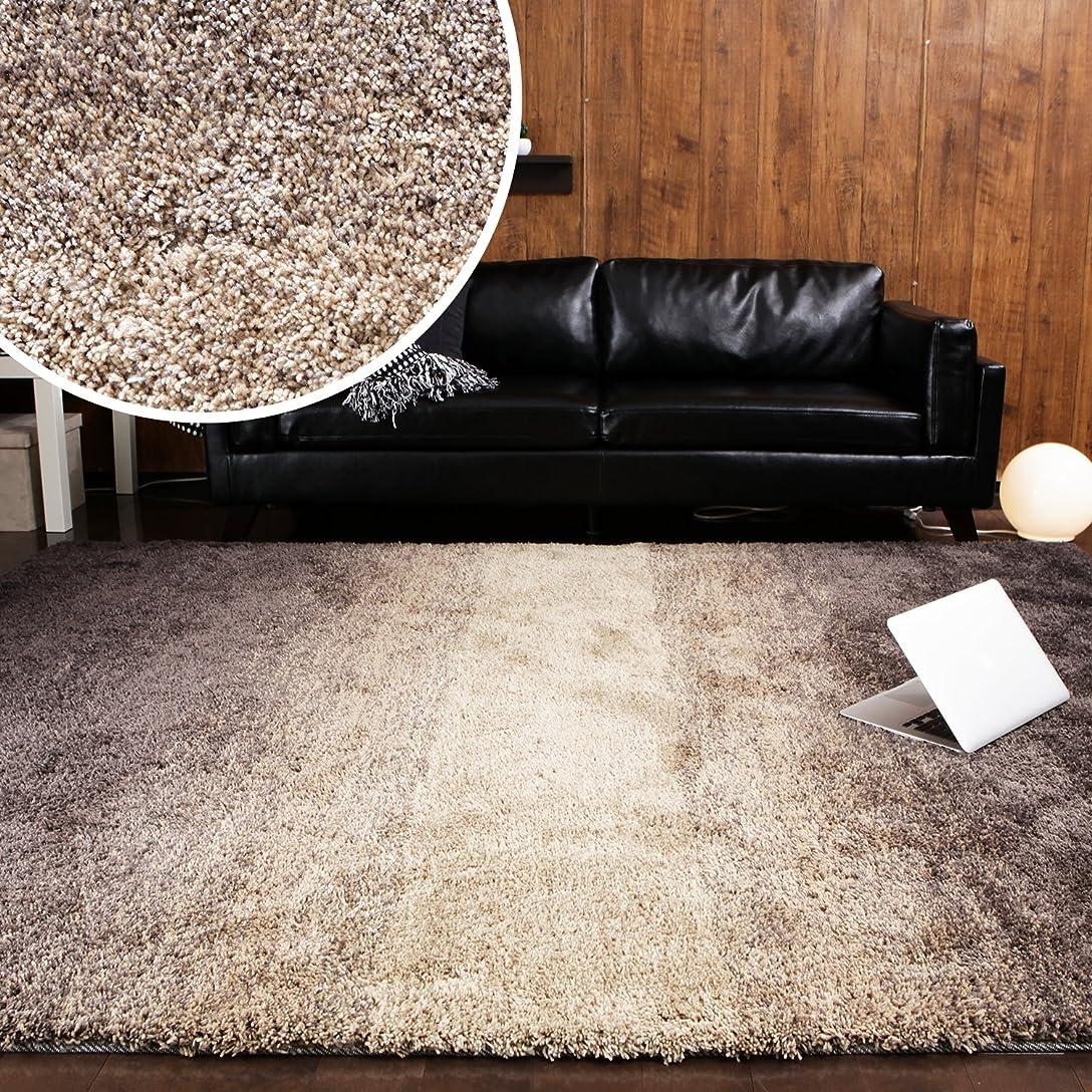 ベイビー休眠洋服LOWYA ラグ マット カーペット 絨毯 おしゃれ 長方形 L 200×250 3畳 ブラウン