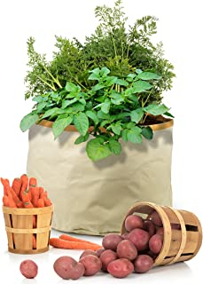 Homegrown Gourmet Root Vegetables Harvest Grow Bag