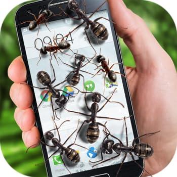 Ants on screen funny joke