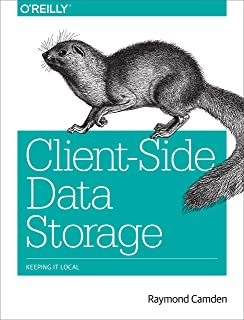 Best client-side data storage Reviews