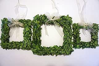 Tradingsmith Preserved Boxwood Square Mini Wreath Set