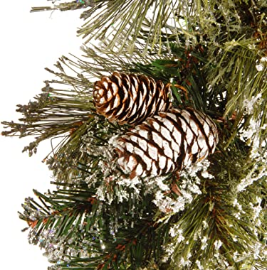 National Tree 6 Foot by 10 Inch Glittery Bristle Pine Garland with Cones (GB1-50-6A-1)