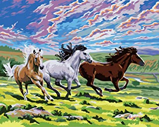 SuperDecor DIY Oil Painting Paint by Numbers kit for Adults Kids Beginner 16x20 Inch (Horses)
