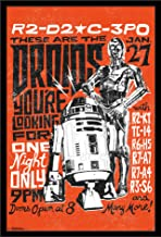 Trends International Wall Poster Star Wars Droids 24 x 36 FR14768BLK24X36
