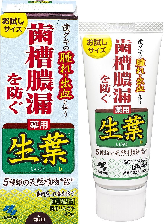 気楽な一節昇る生葉(しょうよう)お試しサイズ 歯槽膿漏を防ぐ 薬用ハミガキ ハーブミント味 40g 【医薬部外品】