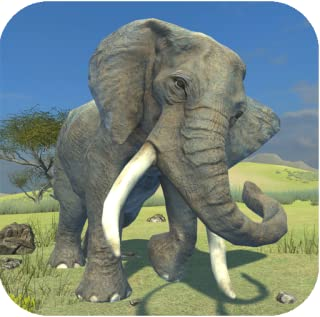 Best clan of elephant Reviews
