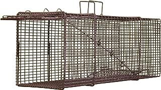 Professional Live Trap - Single Trap Door - Raccoon Size (10x12x32) T101232P