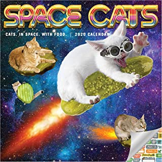 Space Cats Calendar 2020 Set - Deluxe 2020 Space Cats Wall Calendar with Over 100 Calendar Stickers (Space Cats Gifts, Office Supplies)