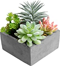 MyGift Artificial Succulent Plants Arrangement in Grey Square Cement Pot (Assortment 1)