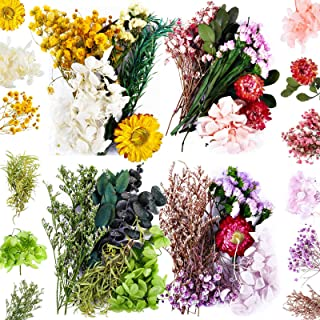 4 Bags Natural Dried Pressed Flowers Leaves Set, Mixed Dried Flowers Colorful Real Dry Flowers for DIY Candle Resin Jewelr...