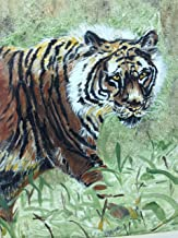 Tiger On The Prowl! Acrylic Painting on Canvas Framed in a Black Wood Frame with Ivory Matte