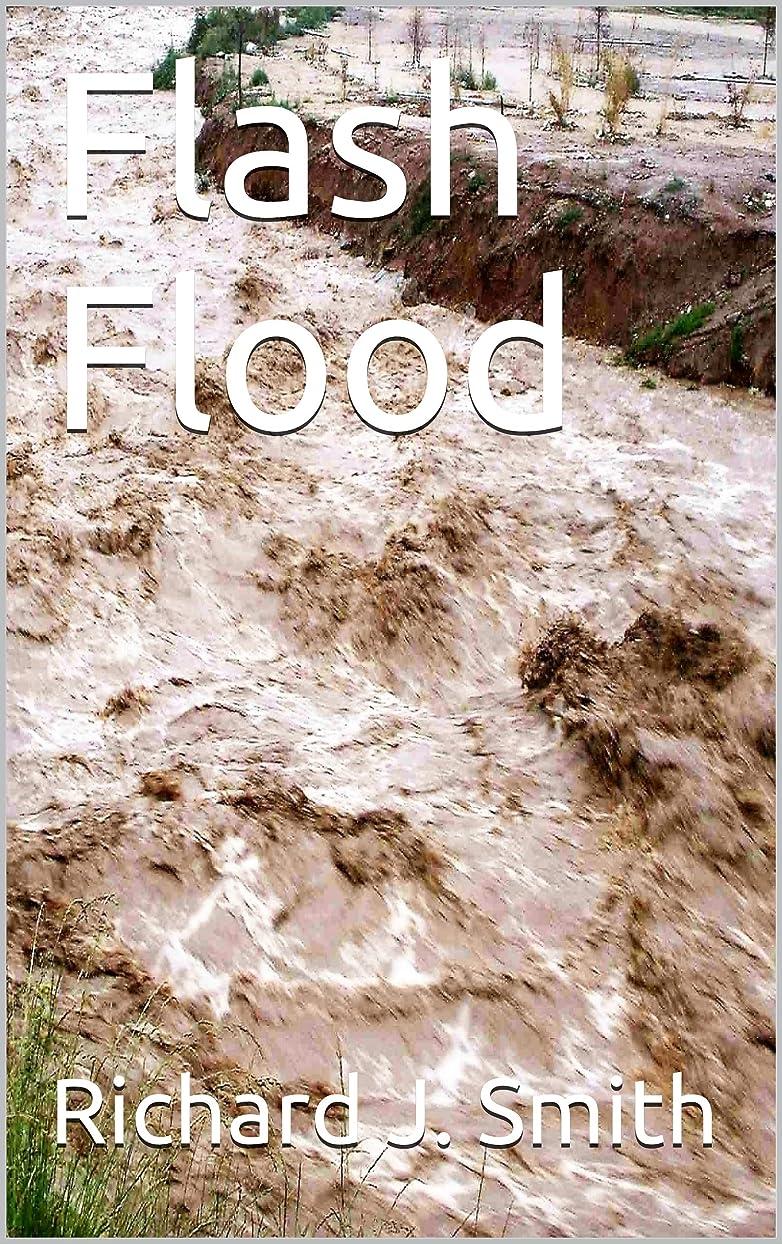 ハイジャックこしょう効果Flash Flood (English Edition)