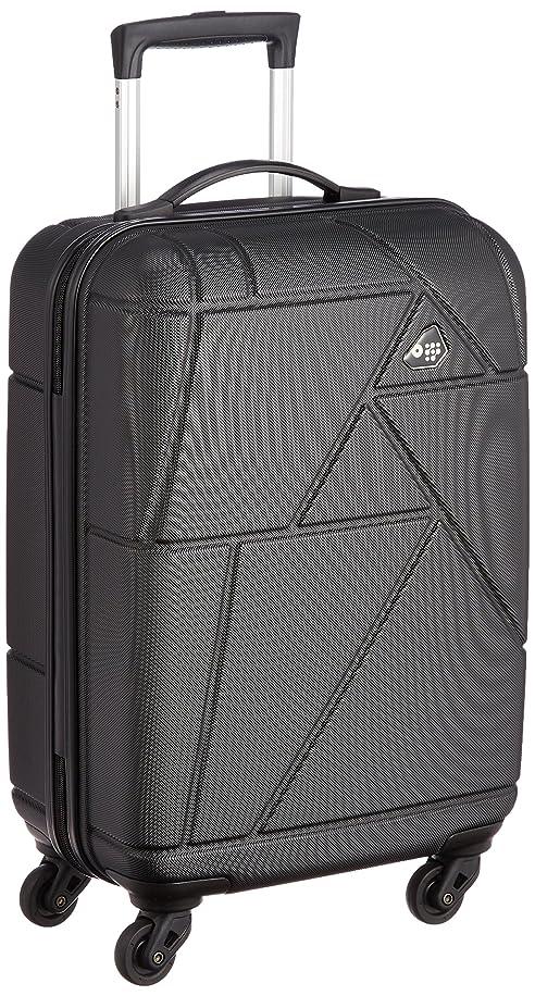 レビュアー世界的に販売員[カメレオン] スーツケース  VERONA  35L