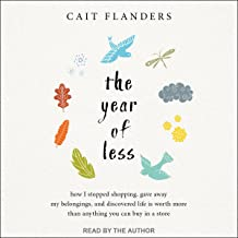 the year of less audiobook