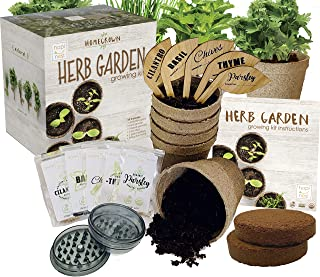 Indoor Herb Garden Growing Seed Starter Kit Gardening Gift - Thyme, Parsley, Chives, Cilantro, Basil, USDA Organic and Non...