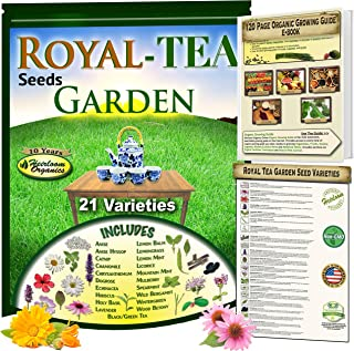 Royal Tea Seeds Garden: 21 Heirloom Collection of Herbal Tea Varieties, Including: Anise, Holy Basil, Catnip, Chamomile, Lemon Balm, 3 Types of Mint, Lavender, Licorice, Hibiscus, Wintergreen & More