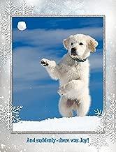 Yukon's Joyful Day Christmas Cards