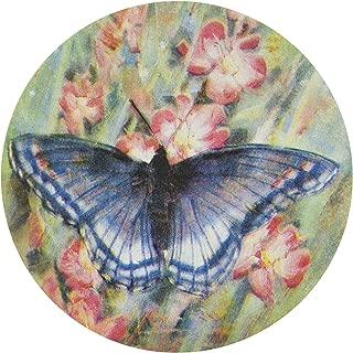 Thirstystone Stoneware Butterfly Garden Coaster, Multicolor