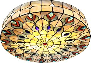 Best peacock chandelier lighting Reviews