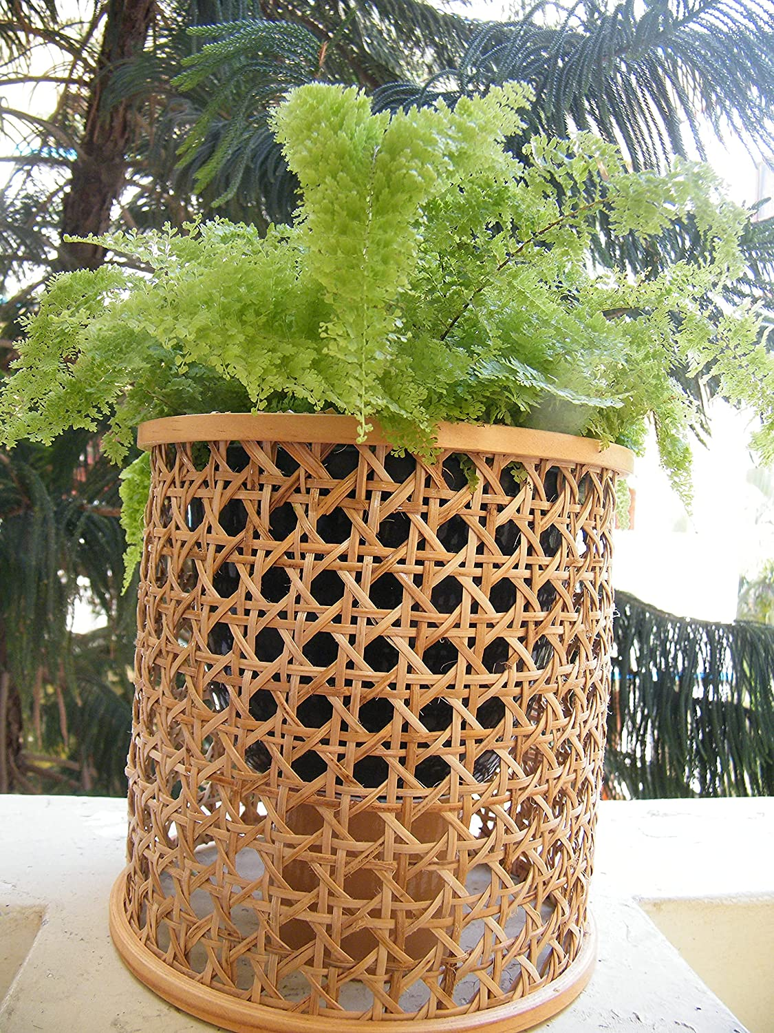Superior Decorative planter Directly managed store flower pot Base cane open cover