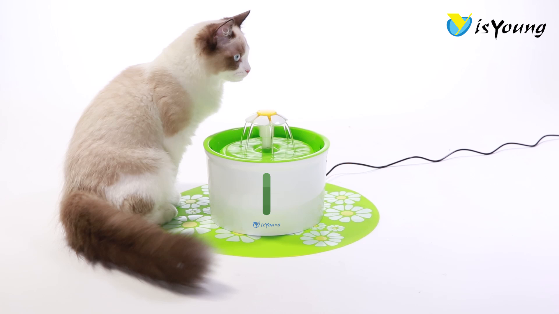 isYoung Cat Water Fountain,1.6L Dog&Cat
