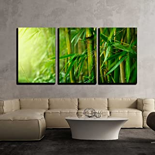wall26 - 3 Piece Canvas Wall Art - Bamboo - Modern Home Decor Stretched and Framed Ready to Hang - 24