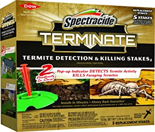 borate for termites