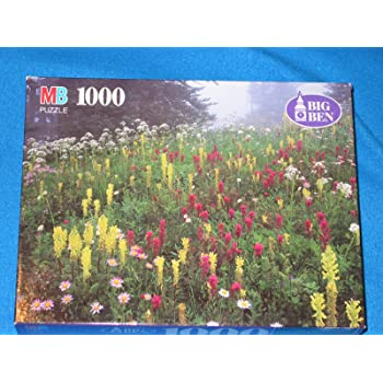 Mount Rainier Paradise Park WA by Unknown Hasbro Guild 1000 Piece Puzzle 20 1//8 X 27 1//2