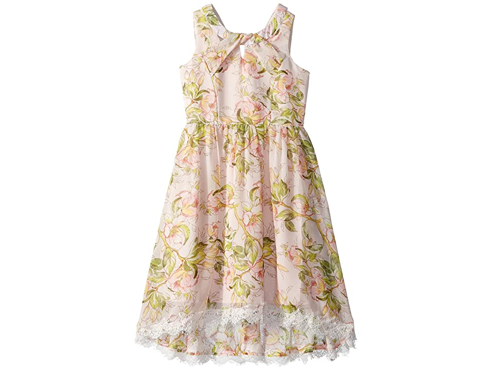 Us Angels Floral Chiffon Dress (Big Kids) (Multi) Girl